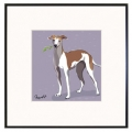 Italian Greyhound - Limited Edition